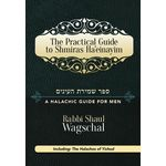 Practical Guide to Shmiras Ha'einayim PGSH