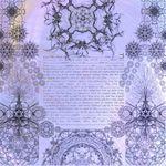 "Tree of life roots- Sandrine Kespi Creations printable pdf-  all wording- ketubah to fill - 23.4x 23.4""- 60x60cm [CLONE] pdf 72"