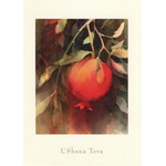 The Ripened Pomegranate - Box of 10 Cards 365-box